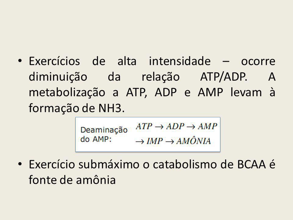 • Exercícios de alta intensidade – ocorre diminuição da relação ATP/ADP. A metabolização a ATP, ADP e AMP levam à formação de NH3. • Exercício submáxi