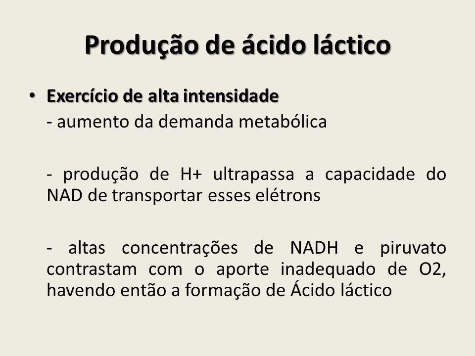 Produção de ácido láctico • Exercício de alta intensidade - aumento da demanda metabólica - produção de H+ ultrapassa a capacidade do NAD de transport