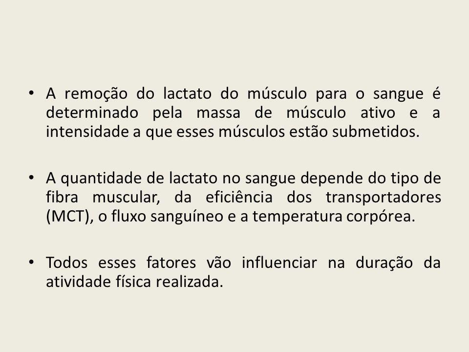 • Exercícios de alta intensidade – ocorre diminuição da relação ATP/ADP.
