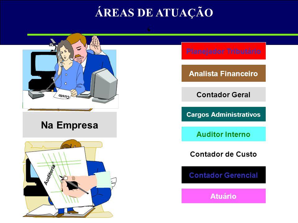 ÁREAS DE ATUAÇÃO Analista Financeiro Contador Geral Cargos Administrativos Auditor Interno Contador de Custo Contador Gerencial Na Empresa Planejador