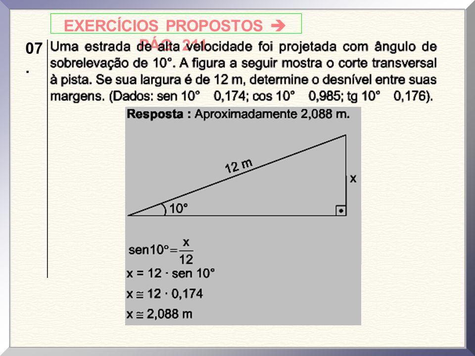 EXERCÍCIOS PROPOSTOS  PÁG. 211. 07.