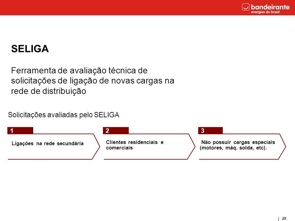 28 Solicitações avaliadas pelo SELIGA Ligações na rede secundária Clientes residenciais e comerciais Não possuir cargas especiais (motores, máq. solda