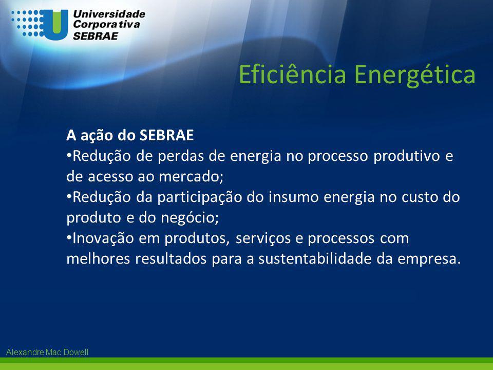 Alexandre Mac Dowell A ação do SEBRAE • Redução de perdas de energia no processo produtivo e de acesso ao mercado; • Redução da participação do insumo