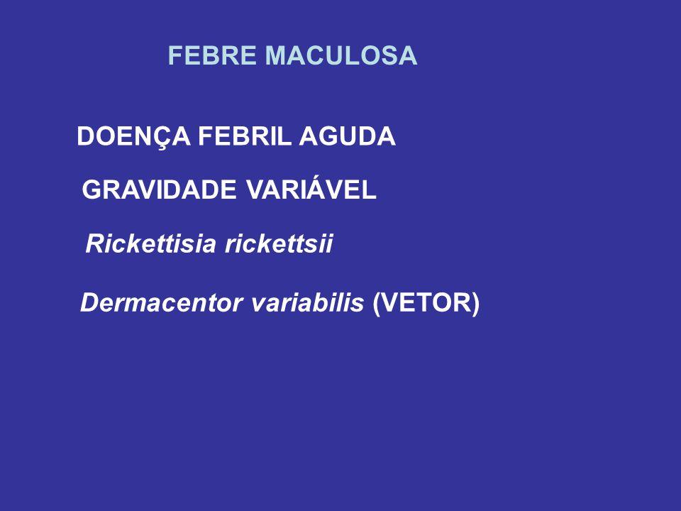 FEBRE MACULOSA DOENÇA FEBRIL AGUDA GRAVIDADE VARIÁVEL Rickettisia rickettsii Dermacentor variabilis (VETOR)