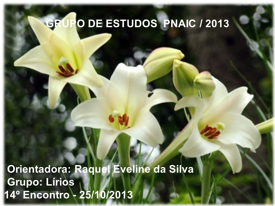 GRUPO DE ESTUDOS PNAIC / 2013 Orientadora: Raquel Eveline da Silva Grupo: Lírios 14º Encontro - 25/10/2013