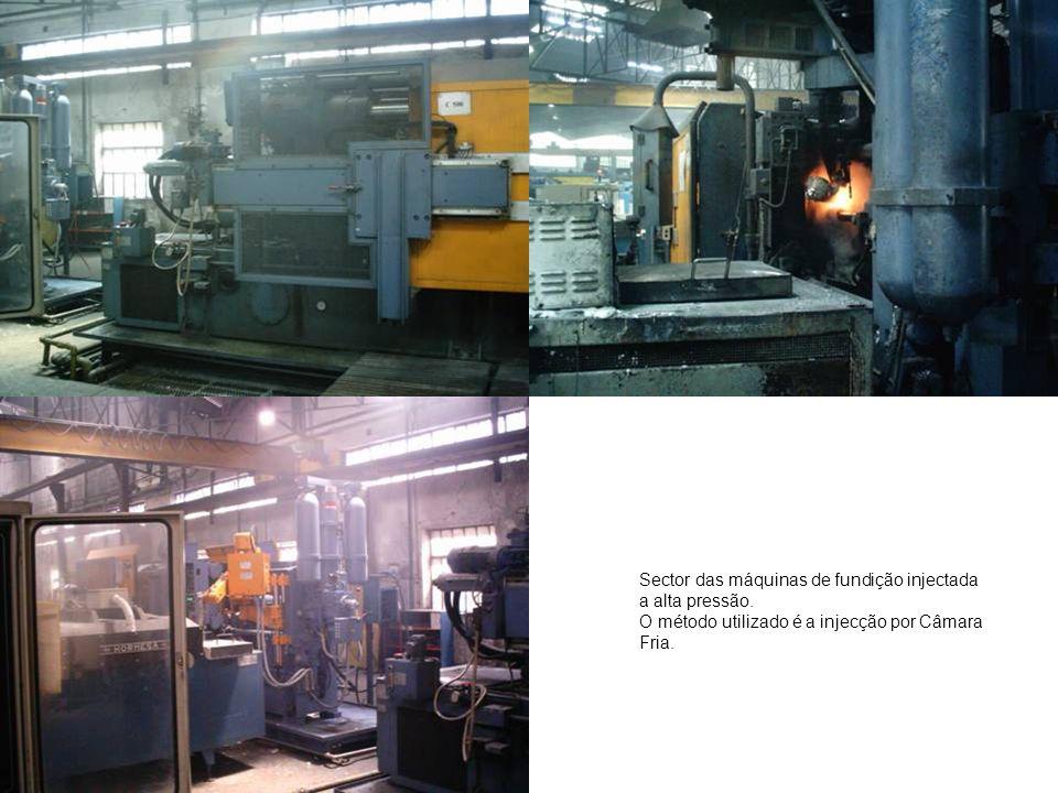 Sector das máquinas de fundição injectada a alta pressão. O método utilizado é a injecção por Câmara Fria.