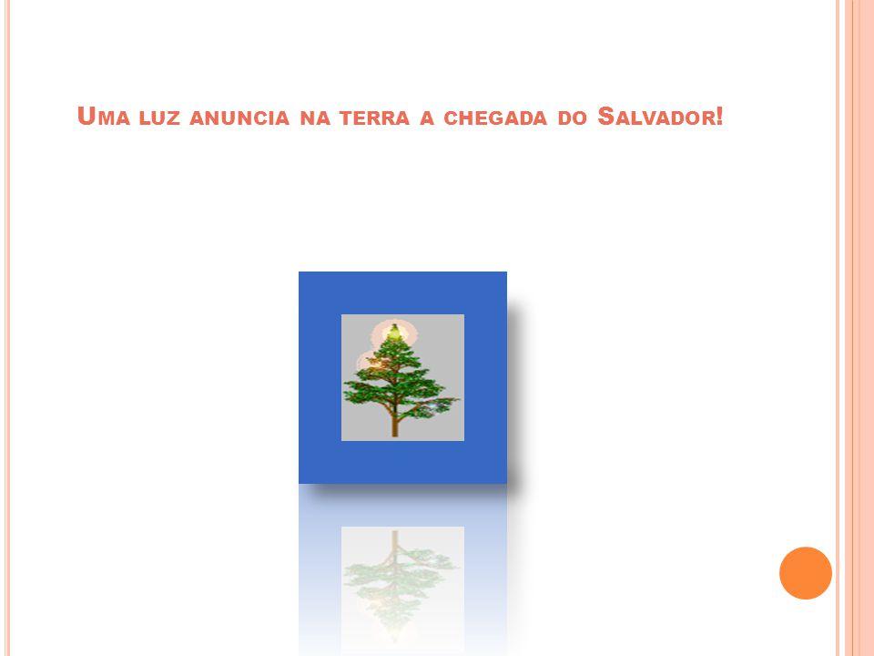 N A T A L ! Cida da Rua 09 09/09/10