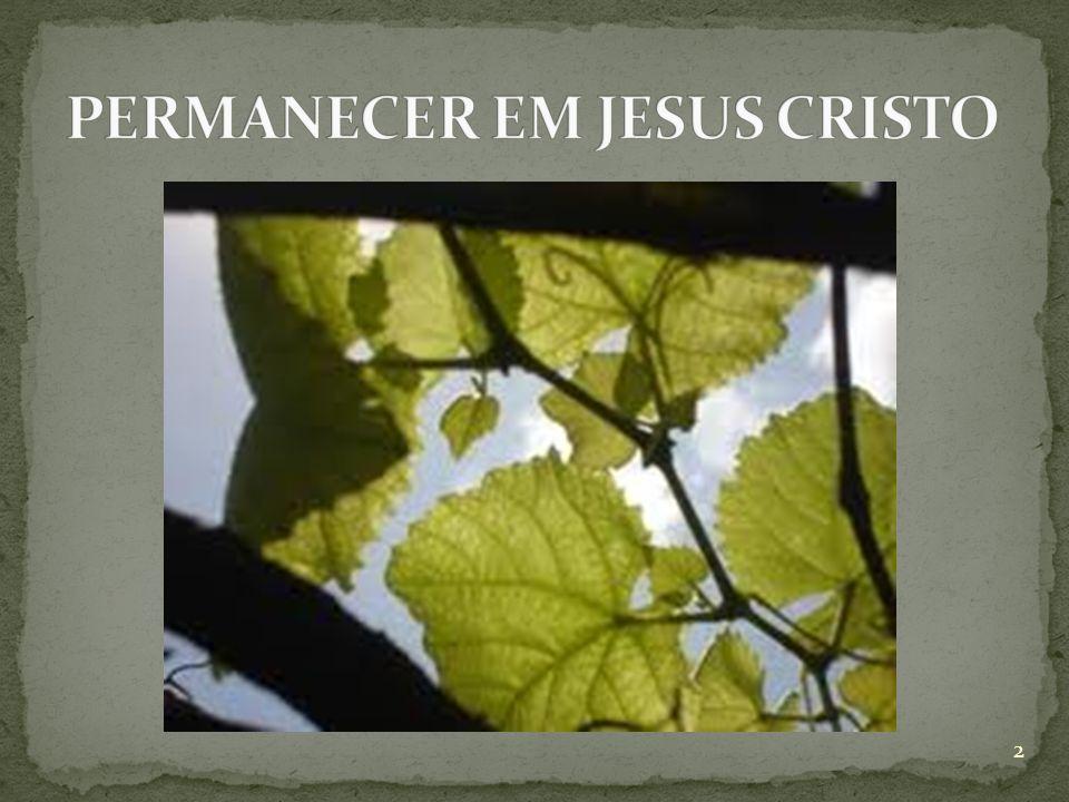  João 15:1 Eu sou a videira verdadeira, e o meu Pai é o agricultor (King James) 3
