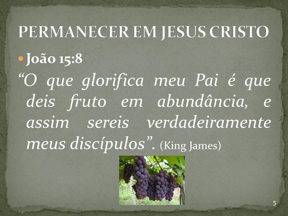  João 15:8 O que glorifica meu Pai é que deis fruto em abundância, e assim sereis verdadeiramente meus discípulos .