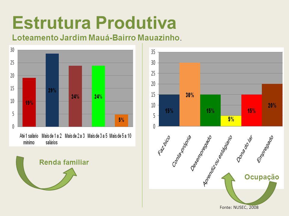 Estrutura Produtiva Loteamento Jardim Mauá-Bairro Mauazinho. Renda familiar Ocupação Fonte: NUSEC, 2008