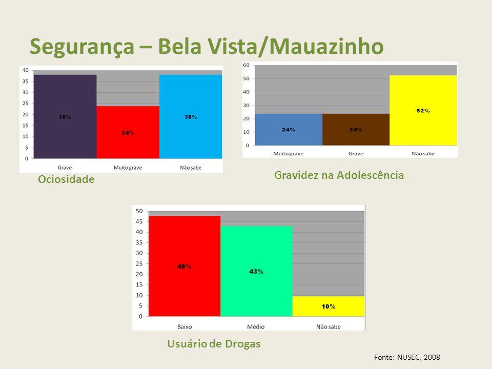 Segurança – Bela Vista/Mauazinho Ociosidade Gravidez na Adolescência Usuário de Drogas Fonte: NUSEC, 2008