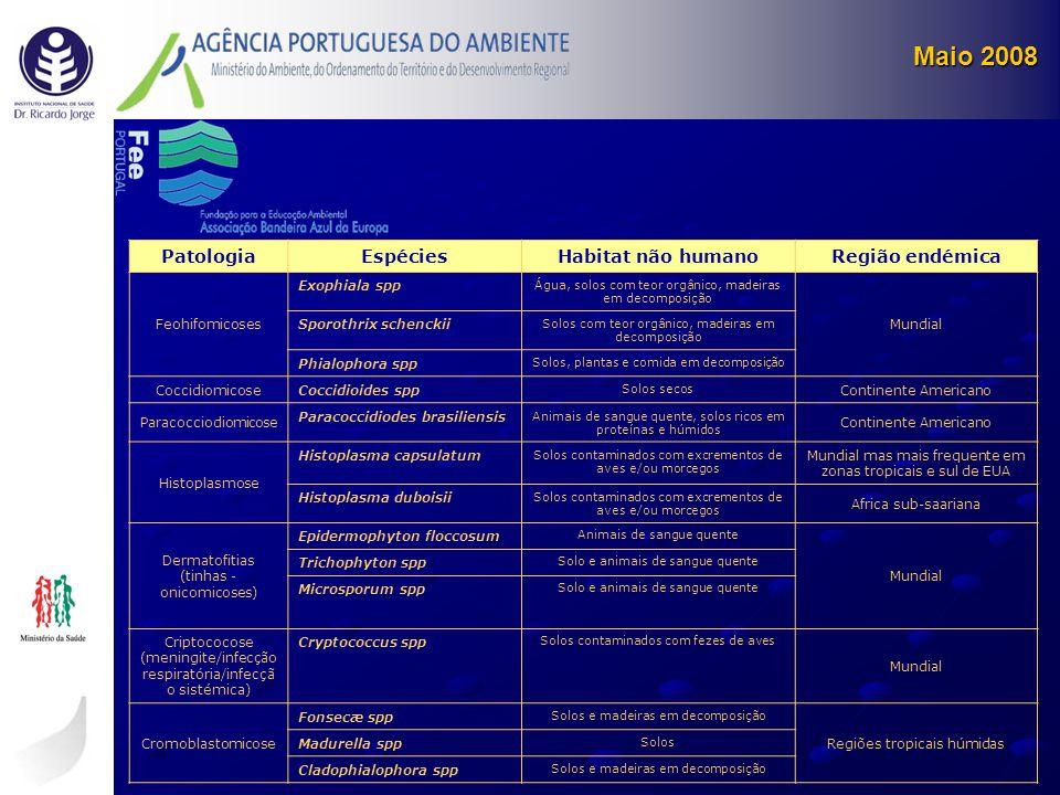 Maio 2008 PatologiaEspéciesHabitat não humanoRegião endémica Feohifomicoses Exophiala spp Água, solos com teor orgânico, madeiras em decomposição Mund
