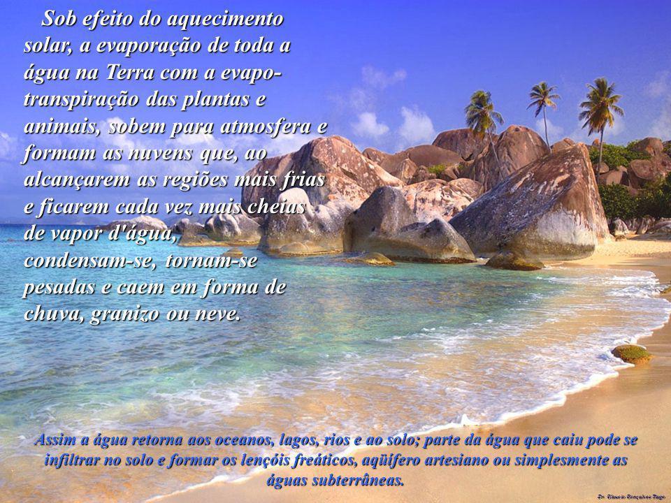 Dr. Glaucio Gonçalves Tiago Sob efeito do aquecimento solar, a evaporação de toda a água na Terra com a evapo- transpiração das plantas e animais, sob