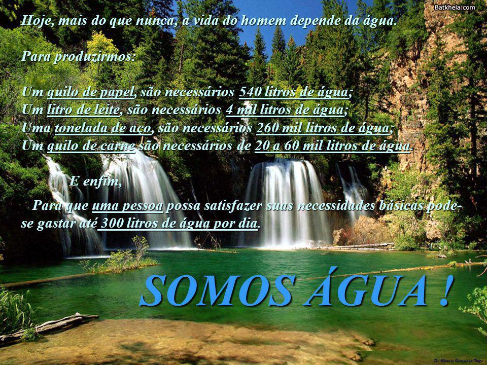 Dr. Glaucio Gonçalves Tiago Hoje, mais do que nunca, a vida do homem depende da água. Para produzirmos: Um quilo de papel, são necessários 540 litros
