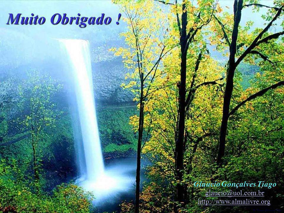 Dr. Glaucio Gonçalves Tiago Muito Obrigado ! Glaucio Gonçalves Tiago glaucio@uol.com.br http://www.almalivre.org