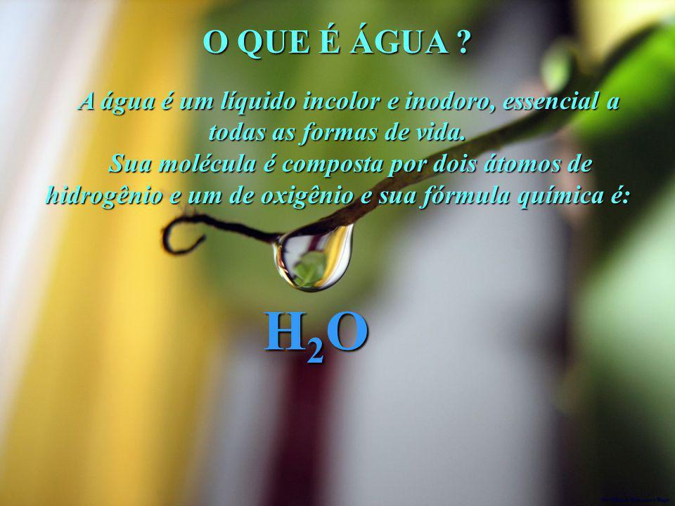 O QUE É ÁGUA ? A água é um líquido incolor e inodoro, essencial a todas as formas de vida. A água é um líquido incolor e inodoro, essencial a todas as