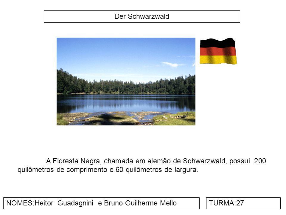 Der Zugspitz NOMES:Henrique Carvalho e Matheus Oliveira TURMA:27 É o ponto mais alto da Alemanha, com os seus 2.962 metros de altitude.