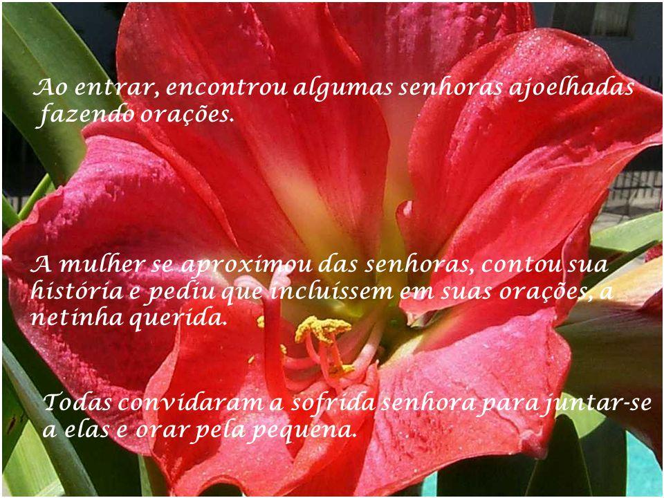Desconheço o autor Formatado por Raquel Aguilar cra_tuca@yahoo.com.br Repasse sem tirar os créditos 09/2005