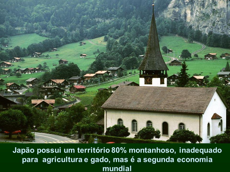 Japão possui um território 80% montanhoso, inadequado para agricultura e gado, mas é a segunda economia mundial