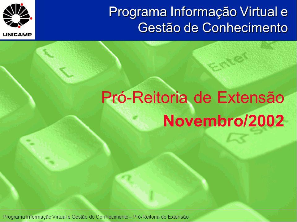 Programa Informação Virtual e Gestão de Conhecimento Pró-Reitoria de Extensão Novembro/2002 Programa Informação Virtual e Gestão do Conhecimento – Pró-Reitoria de Extensão