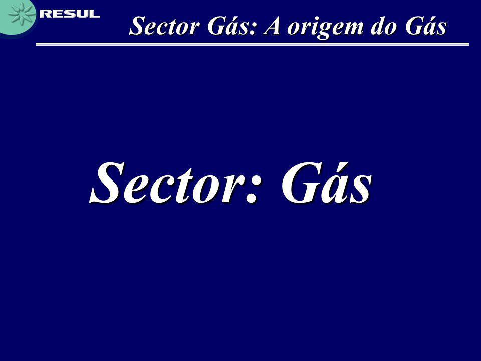 Sector Gás: A origem do Gás Sector: Gás