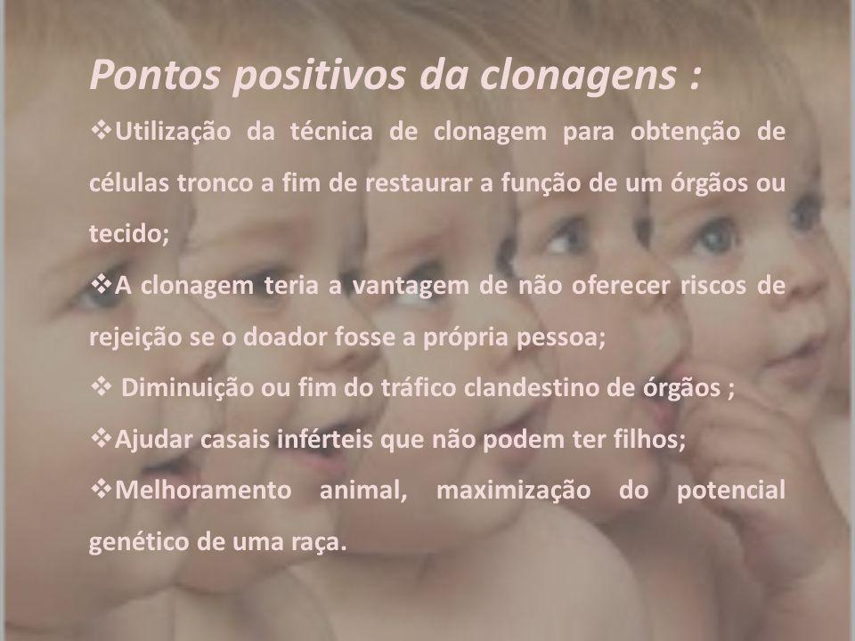 Pontos positivos da clonagens :  Utilização da técnica de clonagem para obtenção de células tronco a fim de restaurar a função de um órgãos ou tecido