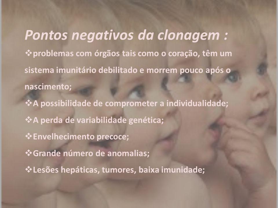Pontos negativos da clonagem :  problemas com órgãos tais como o coração, têm um sistema imunitário debilitado e morrem pouco após o nascimento;  A