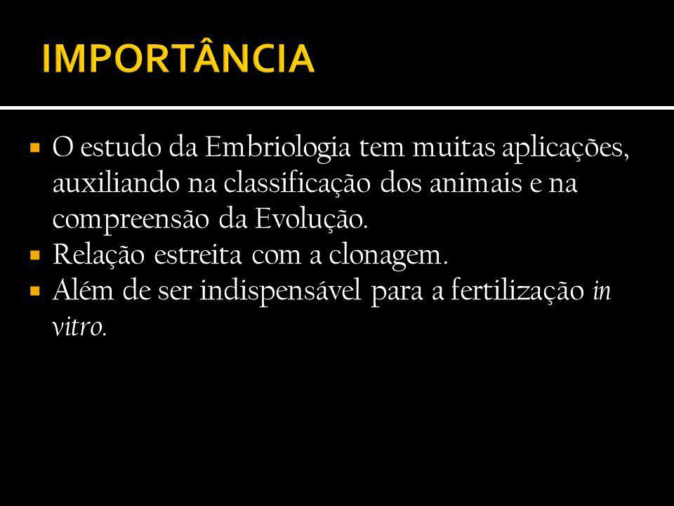  O estudo da Embriologia tem muitas aplicações, auxiliando na classificação dos animais e na compreensão da Evolução.  Relação estreita com a clonag