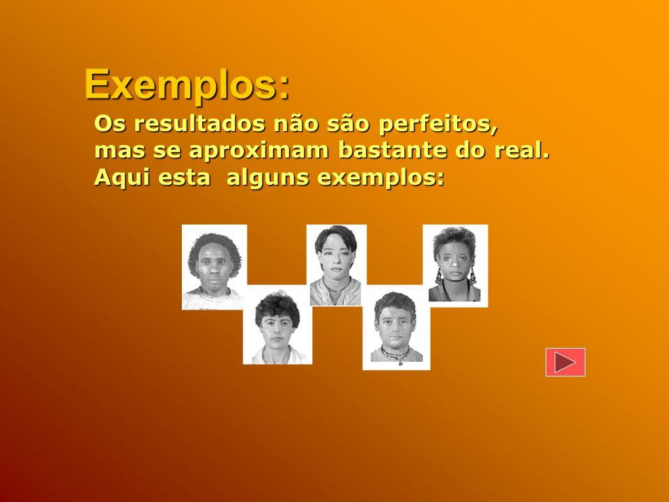 Este programa elabora uma foto sua, a partir dos dados que inserir sobre suas características faciais.