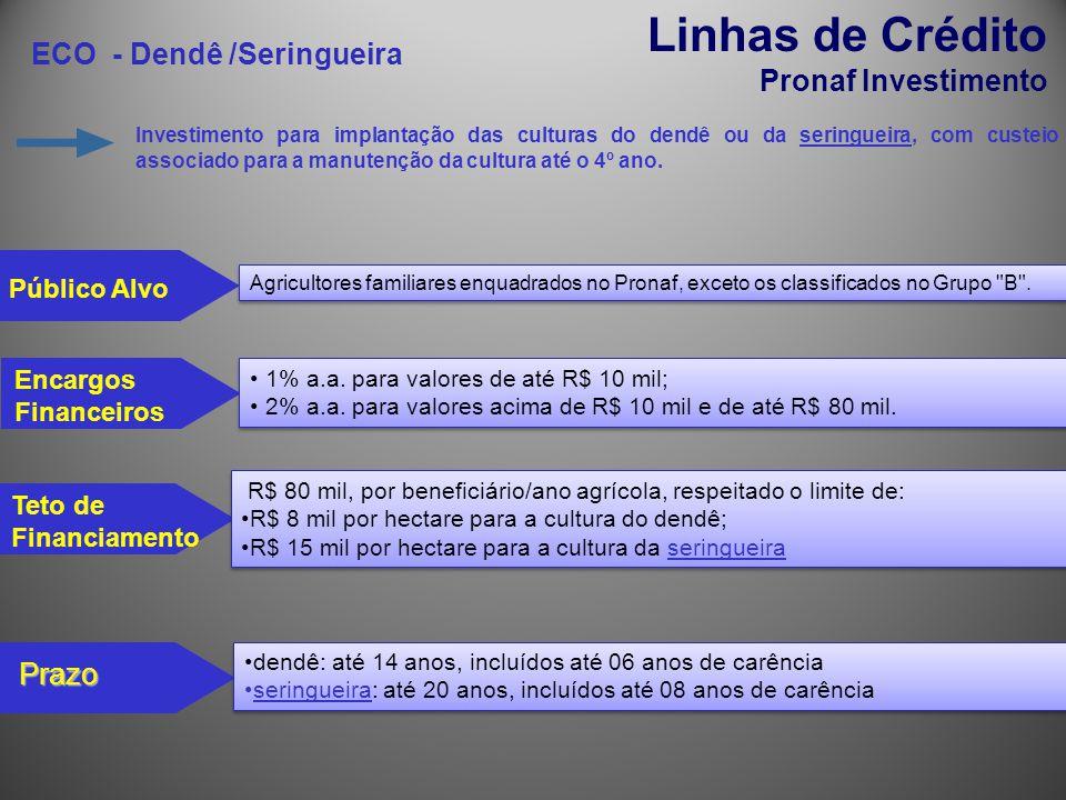 ECO - Dendê /Seringueira Linhas de Crédito Pronaf Investimento Investimento para implantação das culturas do dendê ou da seringueira, com custeio asso