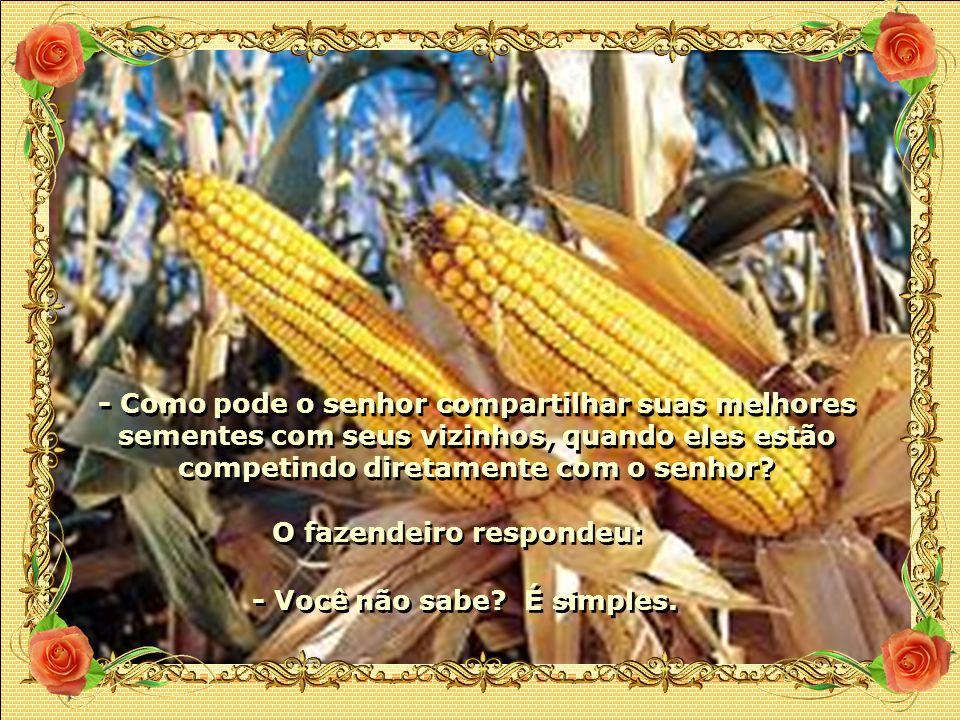 - Como pode o senhor compartilhar suas melhores sementes com seus vizinhos, quando eles estão competindo diretamente com o senhor.