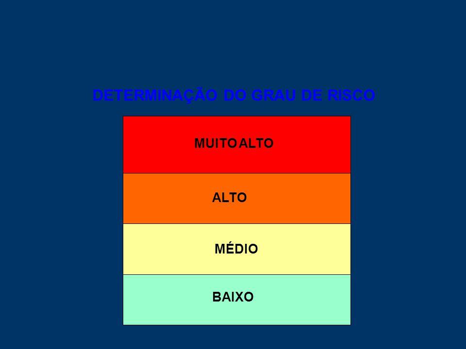 DETERMINAÇÃO DO GRAU DE RISCO MÉDIO MUITO ALTO ALTO BAIXO