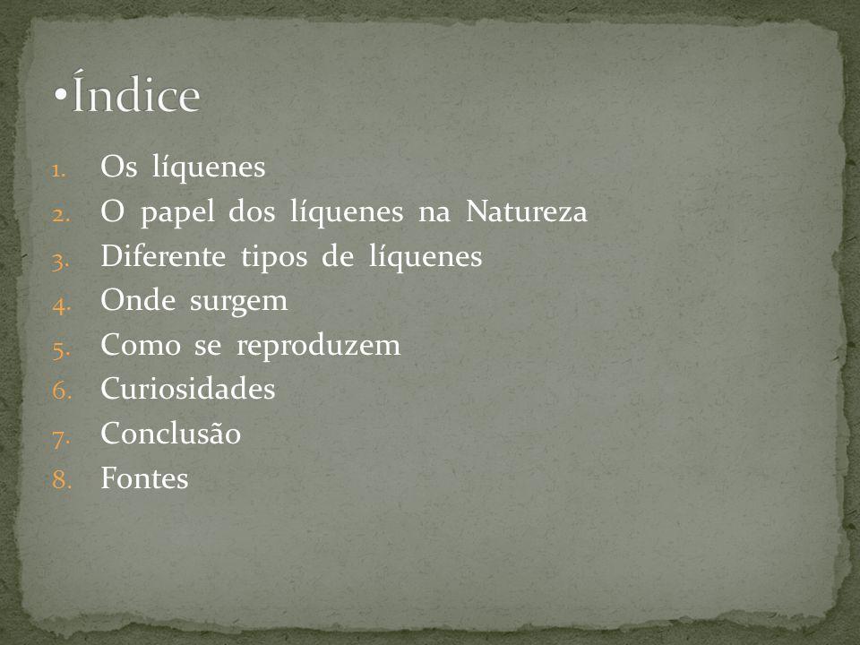 5ºA Francisco Chaves nº8 e Tomás Cardoso nº25, Escola EB23 Clara de Resende