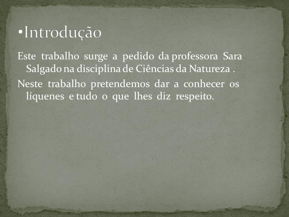 1.Os líquenes 2. O papel dos líquenes na Natureza 3.