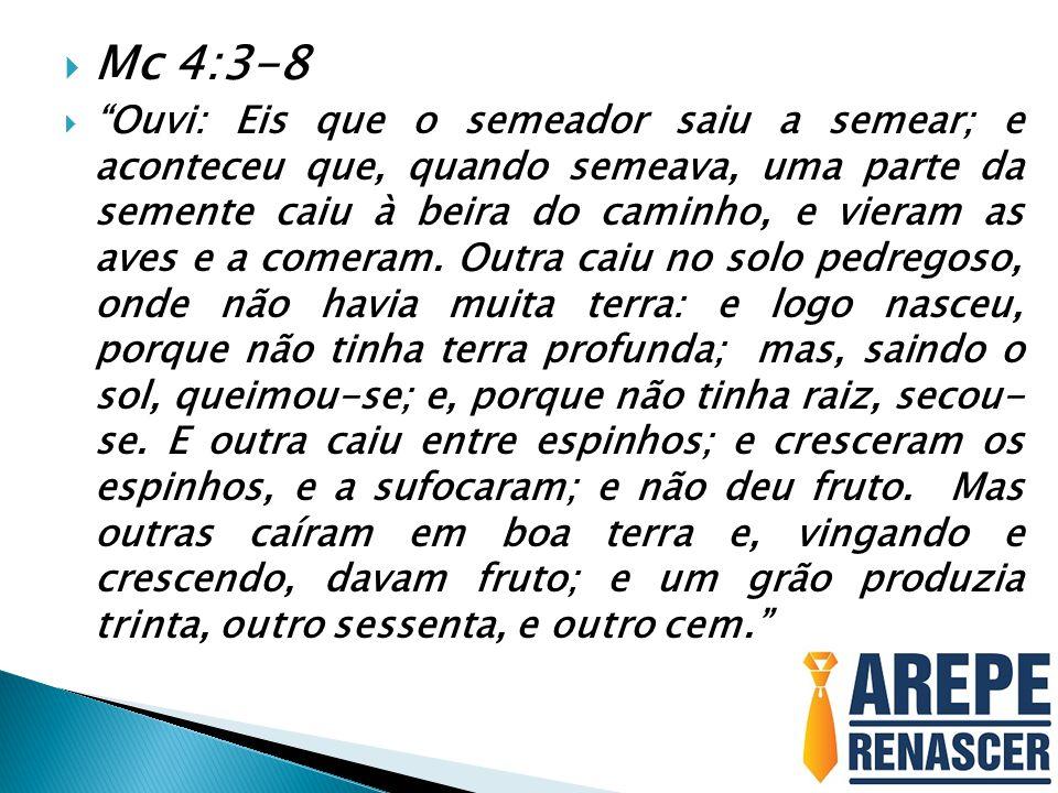  COMO O DIABO QUER ROUBAR A NOSSA SEMEADURA:  SEMEAMOS À BEIRA DO CAMINHO  Recebemos provisão de Deus e somos negligentes, não reinvestimos na Obra.