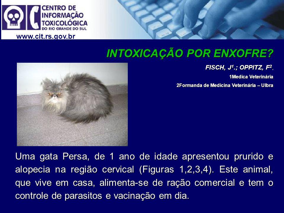 www.cit.rs.gov.br INTOXICAÇÃO POR ENXOFRE? FISCH, J 1.; OPPITZ, F 2. 1Medica Veterinária 1Medica Veterinária 2Formanda de Medicina Veterinária – Ulbra