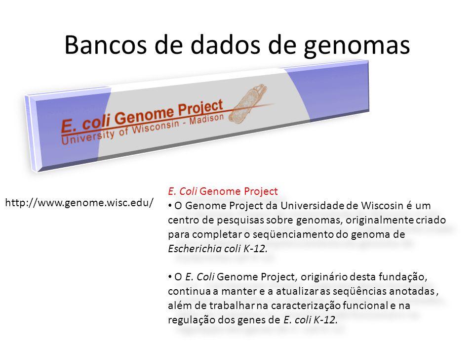Bancos de dados de genomas http://www.genome.wisc.edu/ E. Coli Genome Project • O Genome Project da Universidade de Wiscosin é um centro de pesquisas