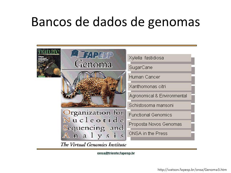 http://watson.fapesp.br/onsa/Genoma3.htm Bancos de dados de genomas