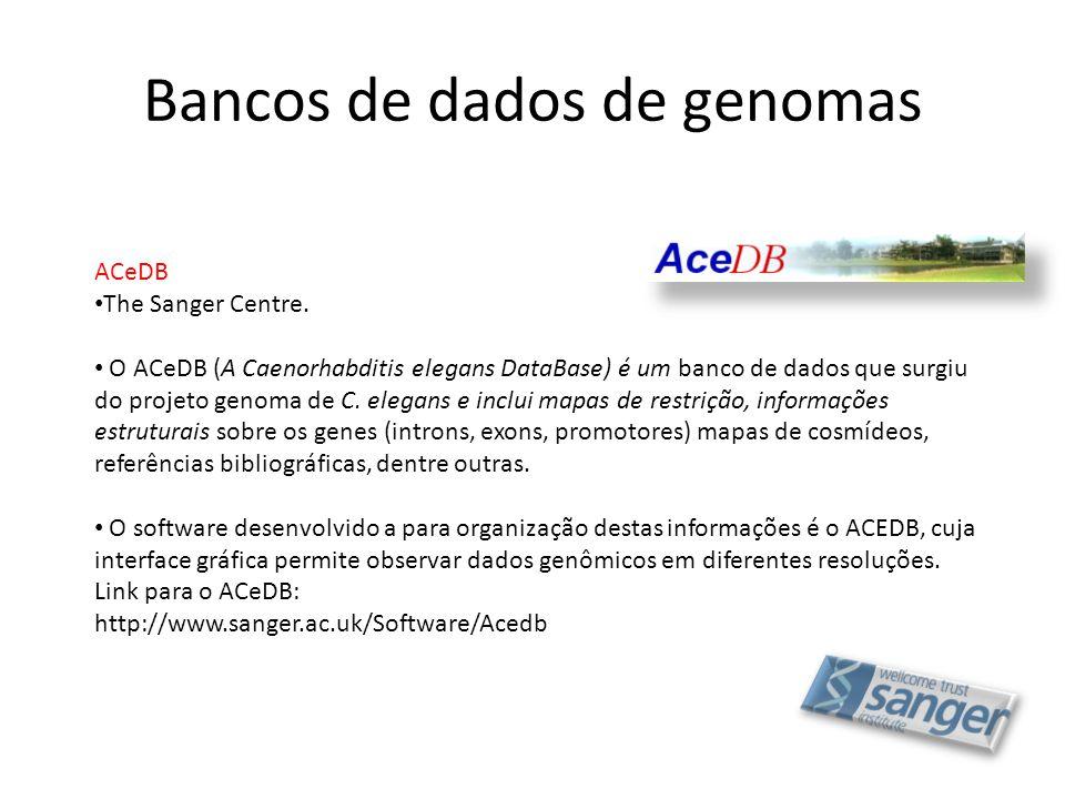 Bancos de dados de genomas ACeDB • The Sanger Centre. • O ACeDB (A Caenorhabditis elegans DataBase) é um banco de dados que surgiu do projeto genoma d