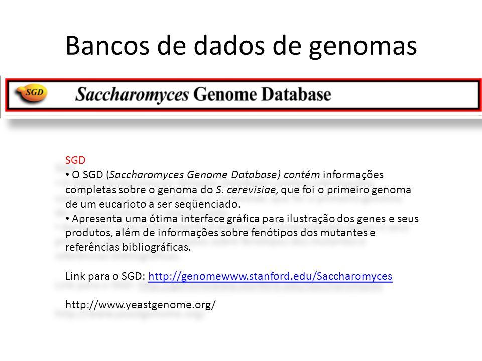 SGD • O SGD (Saccharomyces Genome Database) contém informações completas sobre o genoma do S. cerevisiae, que foi o primeiro genoma de um eucarioto a