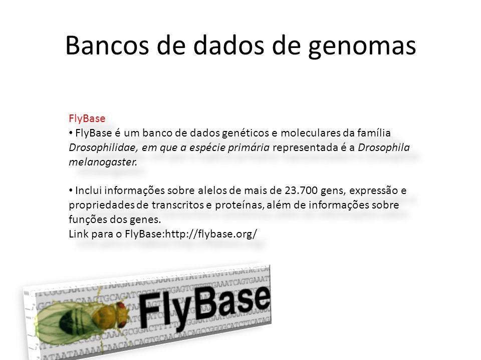 FlyBase • FlyBase é um banco de dados genéticos e moleculares da família Drosophilidae, em que a espécie primária representada é a Drosophila melanoga
