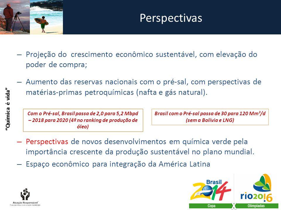 Perspectivas – Projeção do crescimento econômico sustentável, com elevação do poder de compra; – Aumento das reservas nacionais com o pré-sal, com perspectivas de matérias-primas petroquímicas (nafta e gás natural).