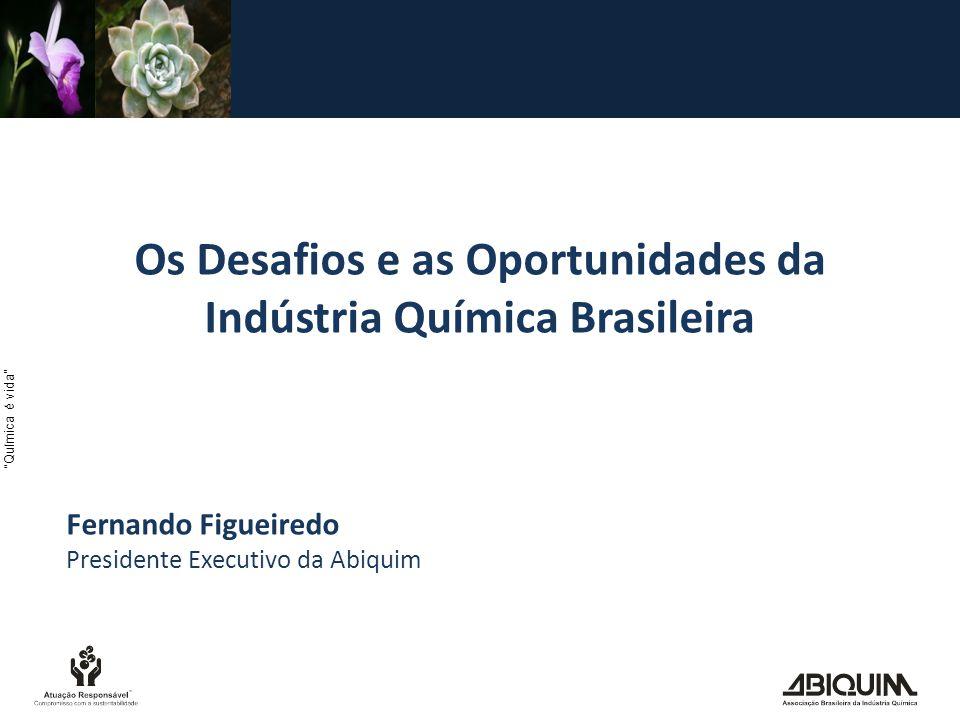 Química é vida Os Desafios e as Oportunidades da Indústria Química Brasileira Fernando Figueiredo Presidente Executivo da Abiquim
