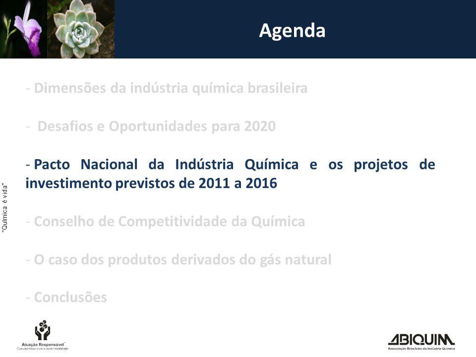 Agenda - Dimensões da indústria química brasileira - Desafios e Oportunidades para 2020 - Pacto Nacional da Indústria Química e os projetos de investimento previstos de 2011 a 2016 - Conselho de Competitividade da Química - O caso dos produtos derivados do gás natural - Conclusões