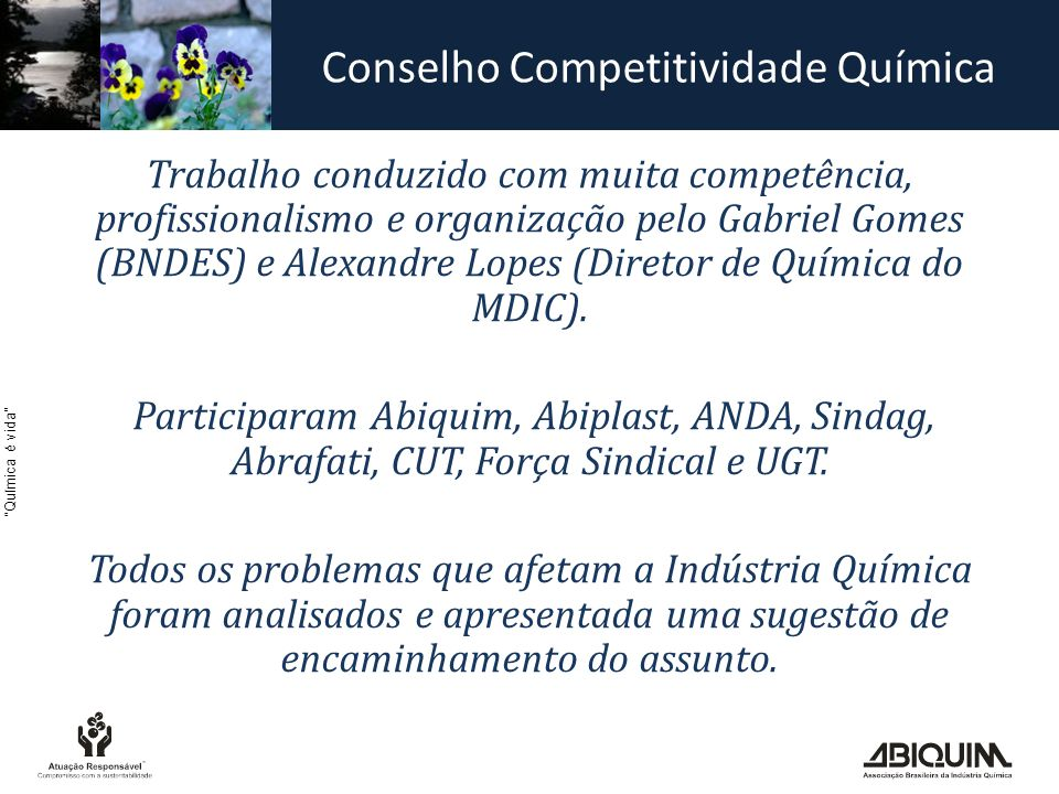 Química é vida Trabalho conduzido com muita competência, profissionalismo e organização pelo Gabriel Gomes (BNDES) e Alexandre Lopes (Diretor de Química do MDIC).