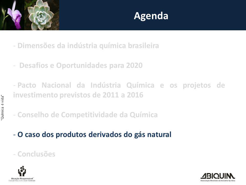 Química é vida Agenda - Dimensões da indústria química brasileira - Desafios e Oportunidades para 2020 - Pacto Nacional da Indústria Química e os projetos de investimento previstos de 2011 a 2016 - Conselho de Competitividade da Química - O caso dos produtos derivados do gás natural - Conclusões