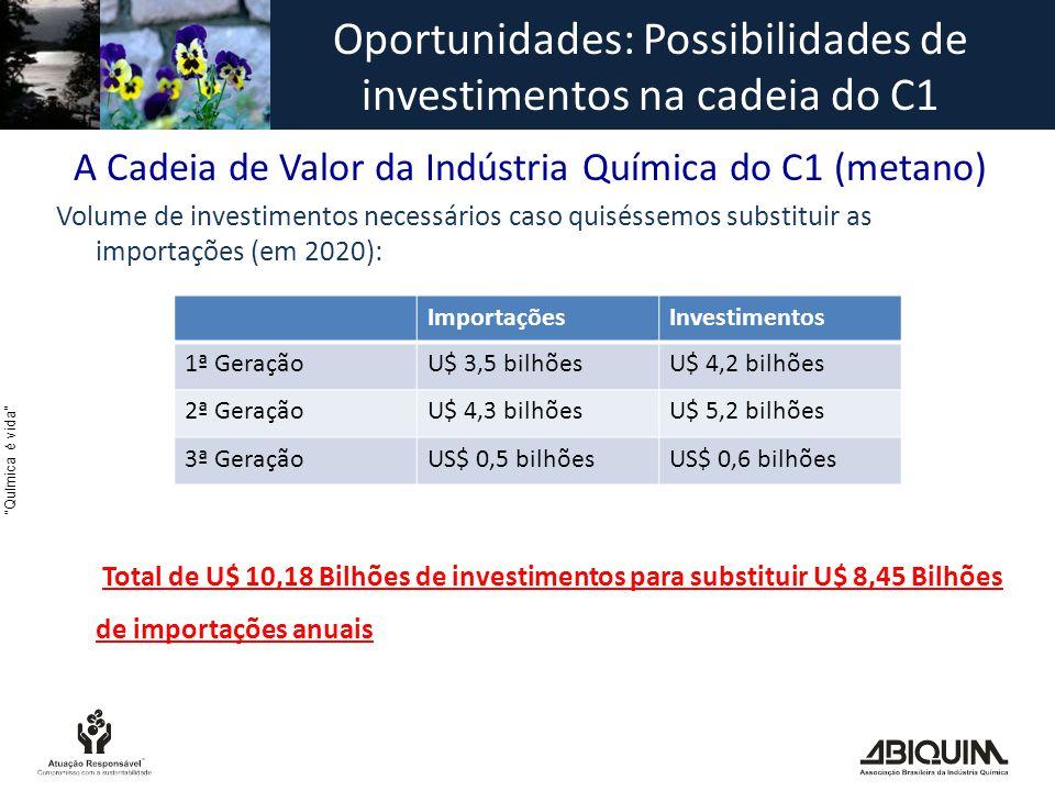 Química é vida A Cadeia de Valor da Indústria Química do C1 (metano) Volume de investimentos necessários caso quiséssemos substituir as importações (em 2020): Total de U$ 10,18 Bilhões de investimentos para substituir U$ 8,45 Bilhões de importações anuais ImportaçõesInvestimentos 1ª GeraçãoU$ 3,5 bilhõesU$ 4,2 bilhões 2ª GeraçãoU$ 4,3 bilhõesU$ 5,2 bilhões 3ª GeraçãoUS$ 0,5 bilhõesUS$ 0,6 bilhões Oportunidades: Possibilidades de investimentos na cadeia do C1
