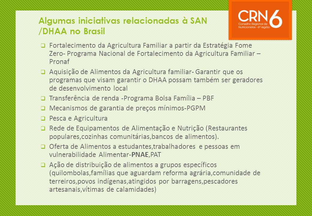 Algumas iniciativas relacionadas à SAN /DHAA no Brasil  Fortalecimento da Agricultura Familiar a partir da Estratégia Fome Zero- Programa Nacional de