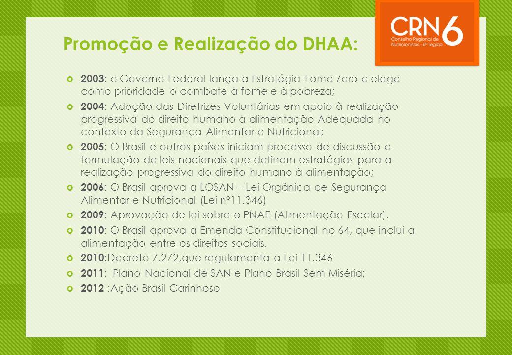 Promoção e Realização do DHAA:  2003 : o Governo Federal lança a Estratégia Fome Zero e elege como prioridade o combate à fome e à pobreza;  2004 :