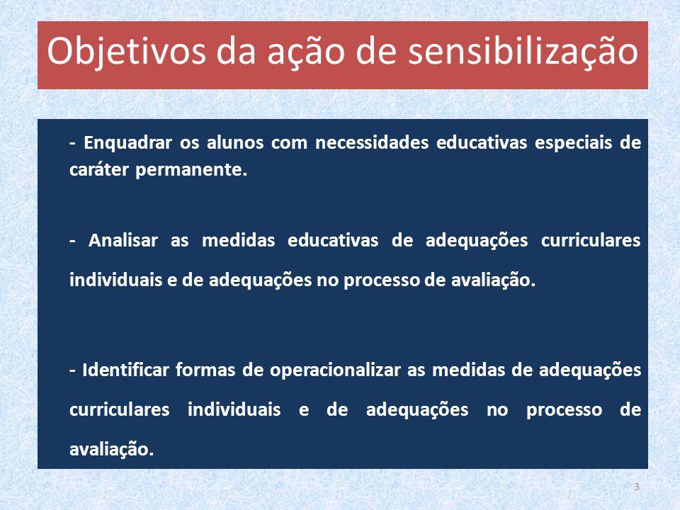 - Enquadrar os alunos com necessidades educativas especiais de caráter permanente. - Analisar as medidas educativas de adequações curriculares individ